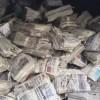 La Ouate: à base de papier journal 89 % recyclé